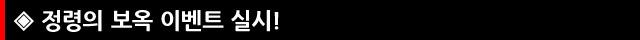 3.정령의보옥.jpg